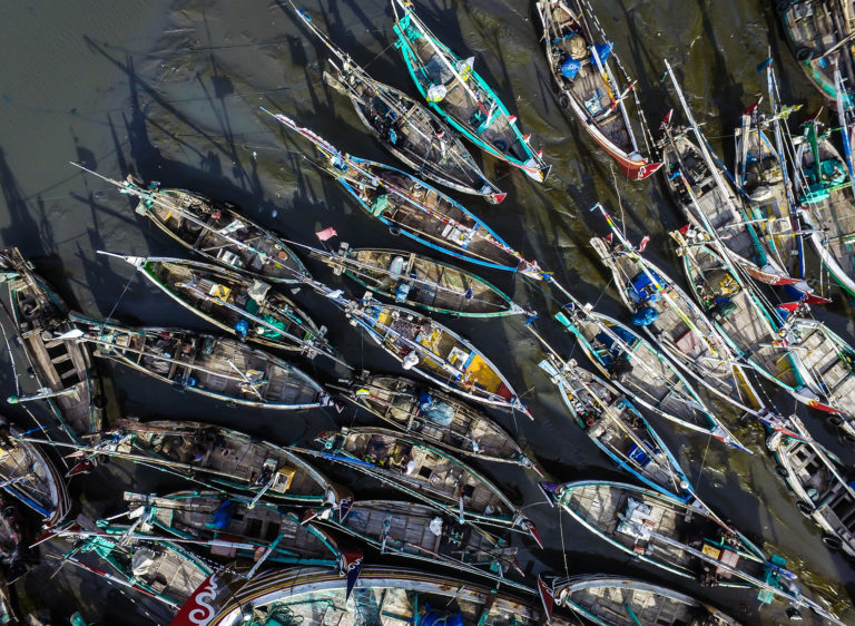 Illegal Fishing, Human Trafficking, and Wildlife Trafficking: Ecological Crises and Security