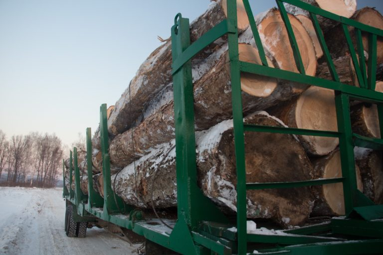 Illegal Logging, Environmental Crime, and Human Trafficking